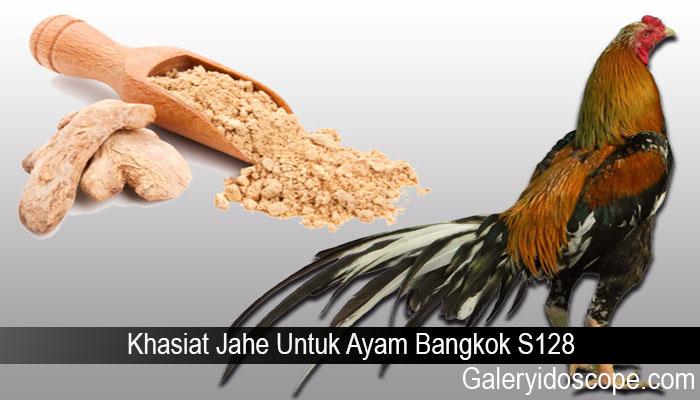 Khasiat Jahe Untuk Ayam Bangkok S128