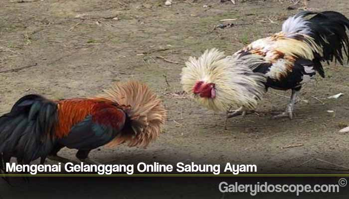 Mengenai Gelanggang Online Sabung Ayam